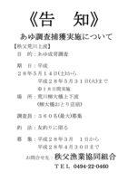 あゆ調査捕獲「告知」.jpg